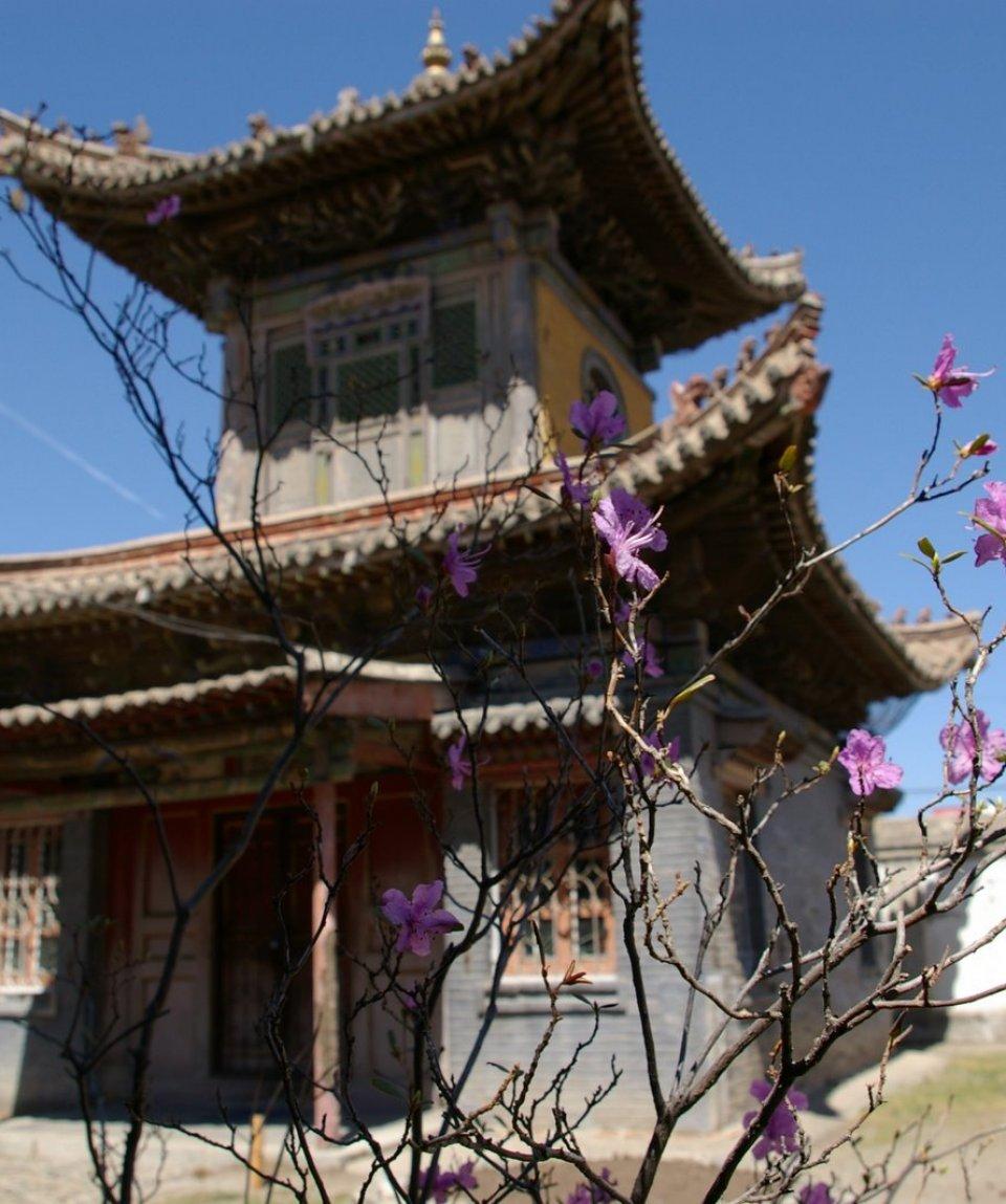 tempio-choijin